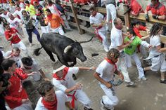 Pamplona. Spain. San Fermin. Running of the bulls