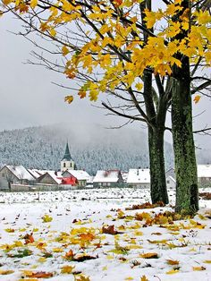 Croatia,