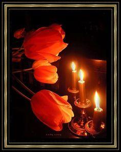 roses n candles