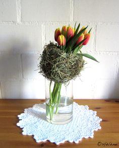 Tulpen + Heukragen