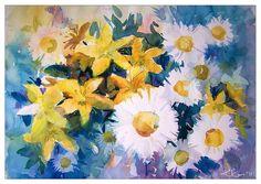 daisies and st. john's wort