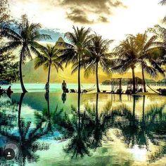 #Sunday #dreaming ... With a glass of #CherryActive  #nonalcoholic#wine#vegan #vegetarian #paradise #yoga #palmtrees #holidays #sunset #pretty #tropical #relax #recovery #photography #horizon #australia #luxury #swimbikerun #retreat #triathlon #ironman #football #tennis #AFL #NRL #organic #happy Via @nelly.and.kelly