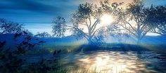 O ódio paralisa a vida, o amor a liberta; o ódio confunde a vida, o amor a harmoniza; ódio escurece a vida, o amor a ilumina.