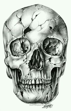 ~A Cracked Skull Illusion ~