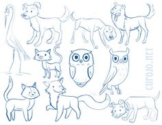 Unused Animal Sketches 2013
