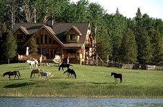 My Horse ranch.............