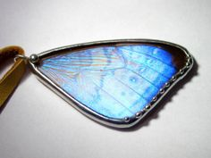 Opal - Real Blue Morpho Sulkowsky Butterfly Wing Necklace- Butterfly Jewelry