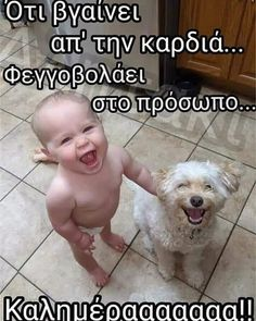 Nejšťastnější fotka na internetu, kterou Lifelong Friends, Happy Photos, Good Morning Photos, Always Smile, Wholesome Memes, Baby Dogs, Animal Memes, Cat Memes, Make You Smile