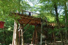 mecseki lombkorona sétány Places To Go, Pergola, Outdoor Structures, Building, Holi, Buildings, Construction, Arbors, Architectural Engineering