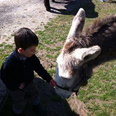 Mi hijo Álvaro aprendiendo a disfrutar de la naturaleza