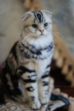 MINI'S SECRET ~ Needle Felted Cat vs Dog 羊毛氈高擬真貓