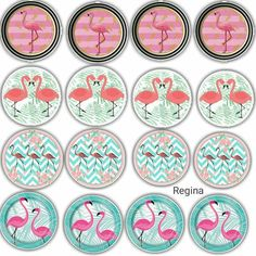 Flamingo Cupcakes, Paper Flower Patterns, Flamingo Decor, Bird Party, Flamingo Birthday, Bottle Cap Images, Tropical Party, Luau Party, Happy Birthday