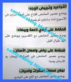 803521_10151538742728834_2118604116_n.jpg