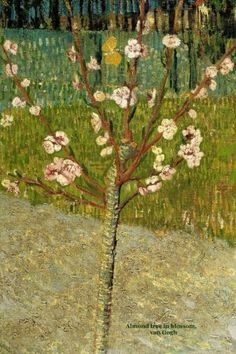 Almond tree in blossom: Van Gogh, Lined/ ruled journal ( notebook, composition book) 160 pages, 6x9 inch (15.24 x 22.86 cm) Laminated by Studio Beeker http://www.amazon.com/dp/1518891594/ref=cm_sw_r_pi_dp_XcGowb0PE3CR8