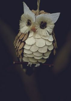 owl - is that from a pine cone?