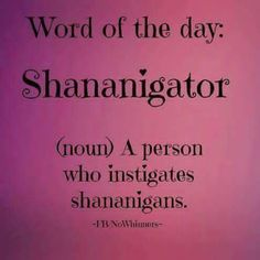 My new word - Shananigator!