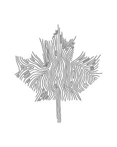Ten Thousand Page Colouring Book - pixohammer Leaf Coloring Page, Colouring, Coloring Books, Coloring Pages, Canadian Maple Leaf, Abstract Lines, Line Drawing, Drawings, Art