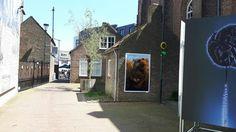 Van Gogh pleintje