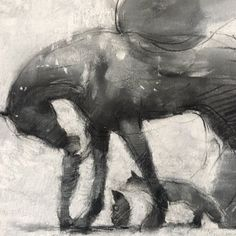 Horse Drawings, Art Drawings, Drawing Art, Charlie Mackesy, The Mole, Horse Shirt, Equine Art, Horse Love, Love Art