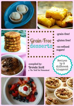 """GRAIN FREE RECIPES From the """"Well Fed Homestead"""" Grain-Free Desserts e-Book! Brenda'ss been working hard on compiling this e-book of grain-free, refined-sugar-free amazing dessert recipes!  Get 30% off of her newest e-book, Grain-Free Desserts with the coupon code """"sweetholiday"""""""