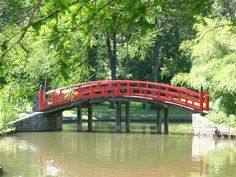 in the Japanese Garden at the Memphis Botanic Garden. My son used to love to go the 'red bridge' & feed the fish.