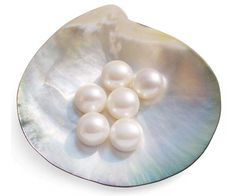 DID YOU KNOW: If you were born in June, your birthstone is the pearl.  According to research of ancient manuscripts and stone etchings, a Persian princess who died around 420 BC may have been wearing her cherished pearls when her body was interred in a sarcophagus which today is on display at the famous Louvre in Paris.