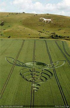 crop circle bee - Milk Hill - Alton Barnes, Wiltshire 25th Jun 2004