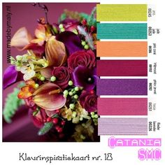 Kleurinspiratie week 13 t/m   madebymaly