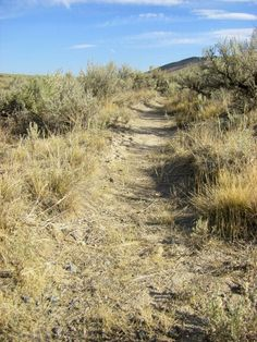 Wagon ruts along the Oregon Trail at the Historic Oregon Trail Interpretive Center ( image by J. Gauthier)