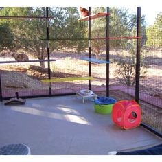 """An outdoor """"cattery"""" lol fun idea would be cute idea for pups too"""