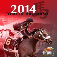 Year of the Horse 2014 - Preakness Baltimore Maryland