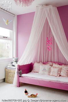 pink rose princesse