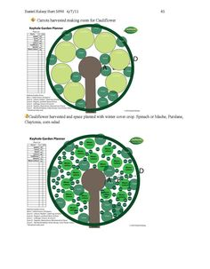 PERMACULTURE AND PERENNIAL FOOD FOREST DESIGN