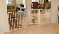53 Best Indoor Cat Barriers Images Cat Gate Diy Dog