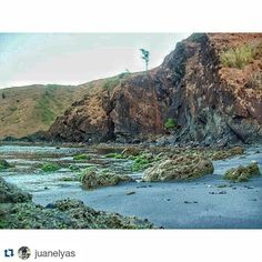 #Repost @juanelyas with @repostapp  Follow back for travel inspiration and tag your post with #talestreet to get featured.  Join our community of travelers and share your travel experiences with fellow travelers atHttp://talestreet.com  Nature on its raw form.  #anawangin #zambales #summer #forest #philippines #travel #itsmorefuninthephilippines #camping #cove #nature #southcliff #twitter #anawangincove #naturelovers #travelph #wanderlust #instatravel #rawtrails #goodlife #lovephilippines…