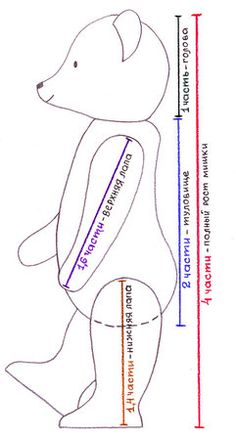 Пропорции классического мишки Тедди: полный рост мишки - 4 части; голова - 1 часть; туловище - 2 части; длина верхней лапы - 1,6 части; длина нижней лапы - 1,4 части.