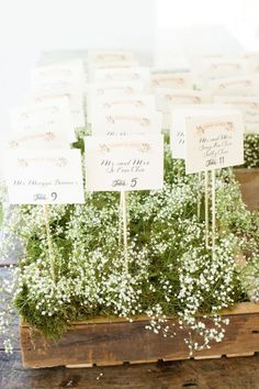 10 Ways to Style Baby's Breath For The Wedding - KnotsVilla - Photography: Style.Art.Life Photography