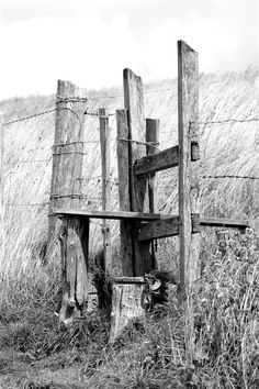 Stile In The Fence