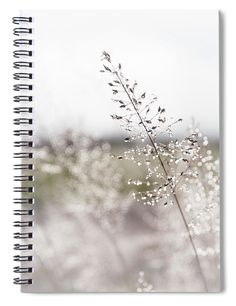 """This x spiral notebook features the artwork """"Winter Morning Diamonds"""" by Phyllis Taylor on the cover and includes 120 lined pages for your notes and greatest thoughts. Notebooks For Sale, Spiral Notebooks, Wood Print, Framed Art Prints, Fine Art America, Tapestry, Artists, Group, Inspired"""