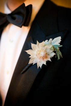 Boutonniere  (Blushing bride protea). Fathers? Grandfathers?