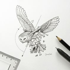 Animals meet geometry in striking illustration series