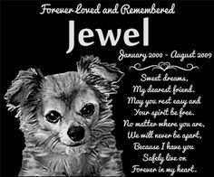 "Personalized Long Haired Chihuahua Dog Pet Memorial 12""x10"" Engraved Black Granite Grave Marker Head Stone Plaque JWL1 >>> Check out the image by visiting the link."