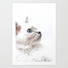 Tiffany Art Print by Deigo - $15.00