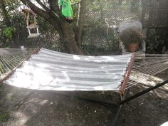 OUTDOOR HAMMOCK Large 2 person Steel Frame~ Roped~ Canvas $75 OBO contact  depdrktrbl@yahoo.com Located in Roanoke VA