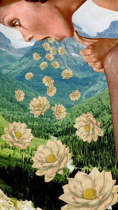 Collage Art - Rosa Desalvo