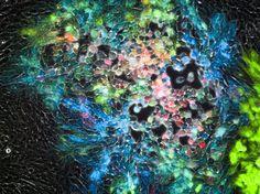 7色のタンパク質、科学アート2013 | ナショナルジオグラフィック日本版サイト
