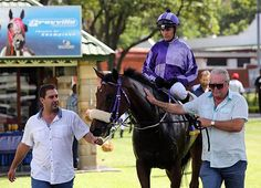 Summerhill Race Results: Greyville 01/03/15  Race 2: UMSINZI HANDICAP (F&M)(Non-black Type) Merit Rated Handicap 1800m  Winner: SUPERCEDE  Stronghold x Sweet Sequel By Casey Tibbs  Bred By: Yellow Star Stud   Owner: Mr M Destombes.  Trainer: P L Lunn  Jockey: Ian Sturgeon  Gold Circle Photo  www.summerhill.co.za  #Thoroughbred #Horseracing