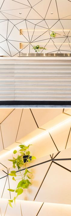 Behind the service counter in this cafe are some cut-outs for displaying items and plants. The tessellated pattern continues through these spaces for an uninterrupted look, and hidden lighting highlights the space.