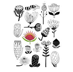 Thrilling Keep A Sketchbook Have Fun Ideas. Awe-Inspiring Keep A Sketchbook Have Fun Ideas. Protea Art, Protea Flower, Doodle Sketch, Doodle Art, Ceramic Painting, Fabric Painting, Laser Art, Wow Art, Botanical Prints