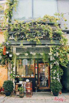Maintained overgrown feeling around store front
